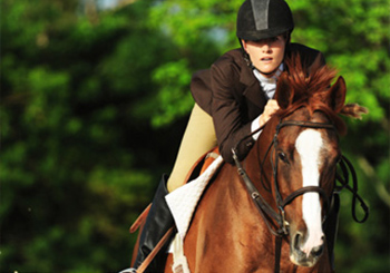 Southern Planning Practice Equestrian Services